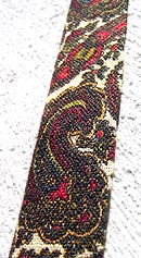 vintage 60s rooster paisley square tie
